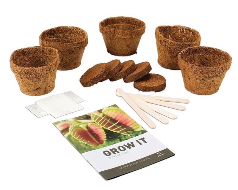 Fleischfressende Pflanze Online Kaufen - Geschenkbox.de Fleischfressende Pflanzen Zuhause Zuchten